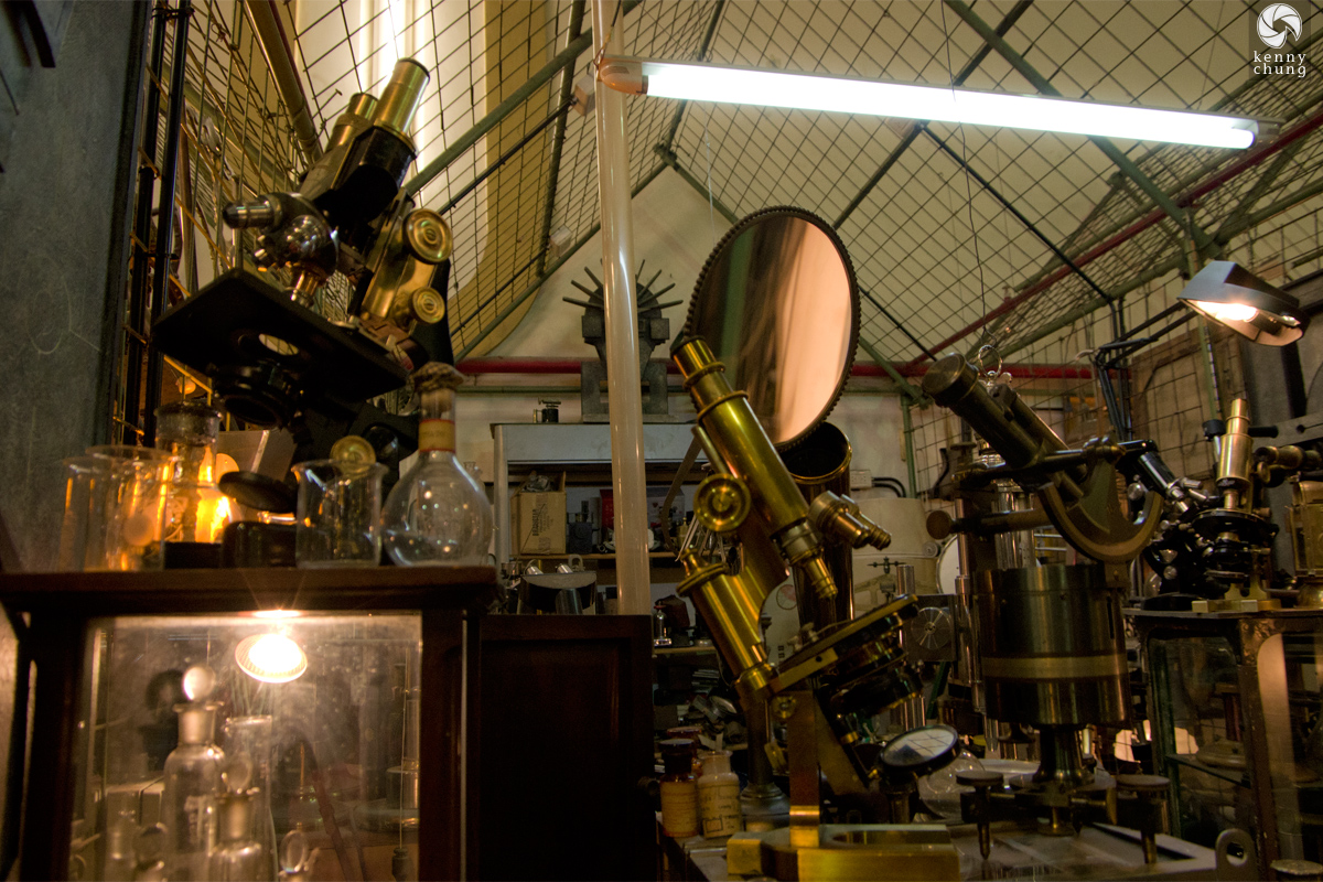 Vintage microscopes, telescopes and optics in San Telmo