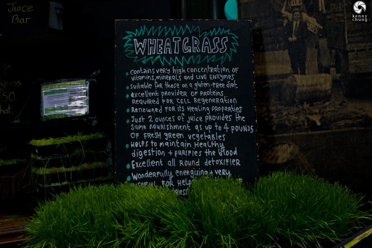 Wheatgrass stand at Borough Market