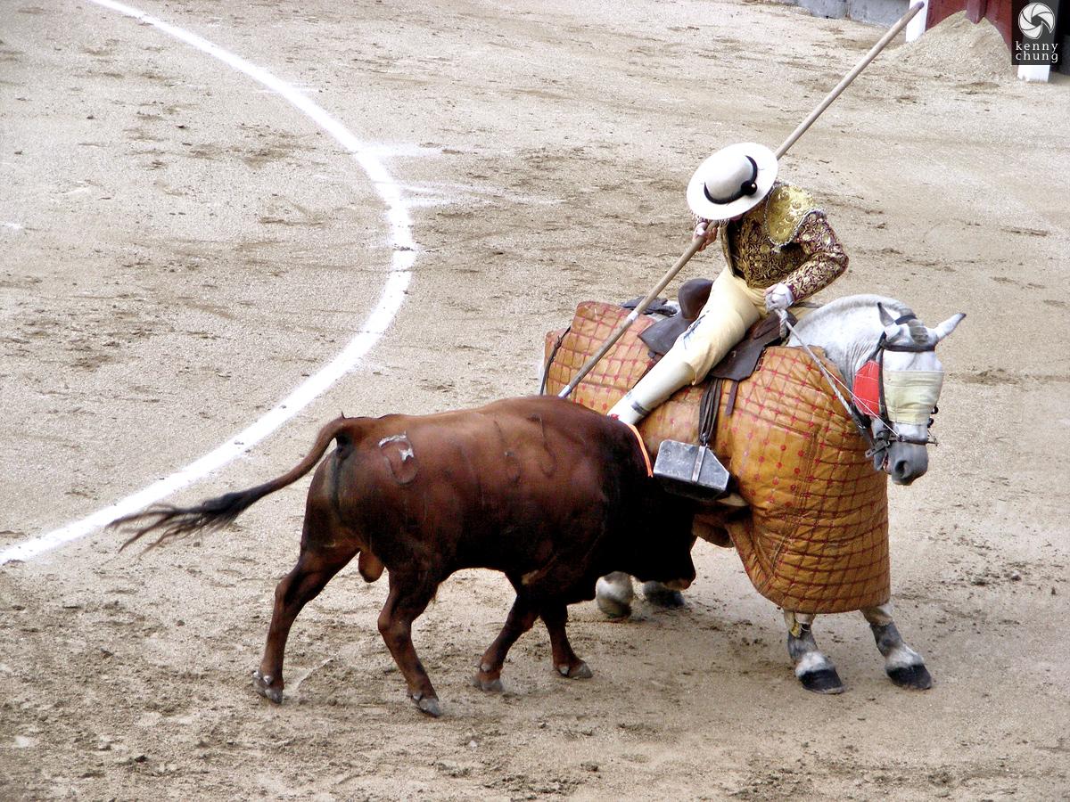 Bull goring the picador's horse