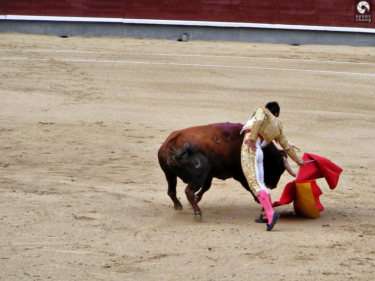 Matador with his muleta