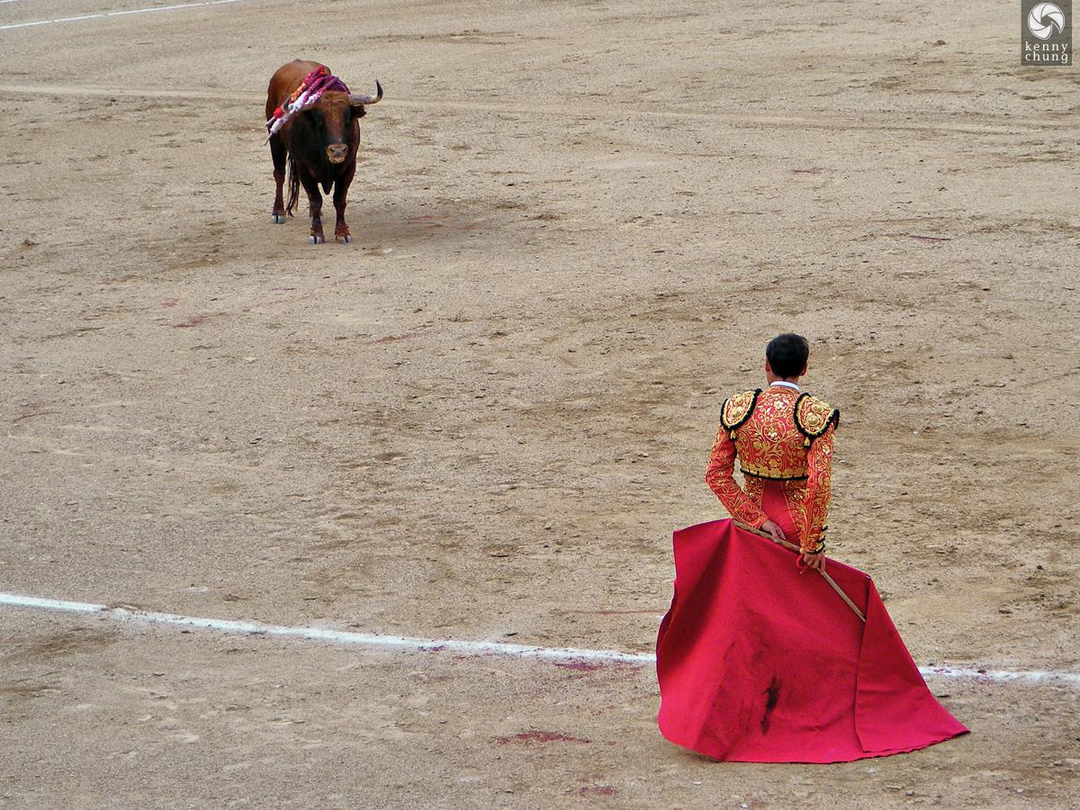 The matador ready to kill the bull