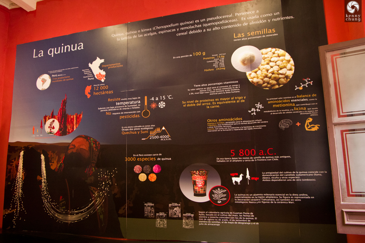 Quinoa infographic at the Museum of Peruvian Gastronomy in Lima