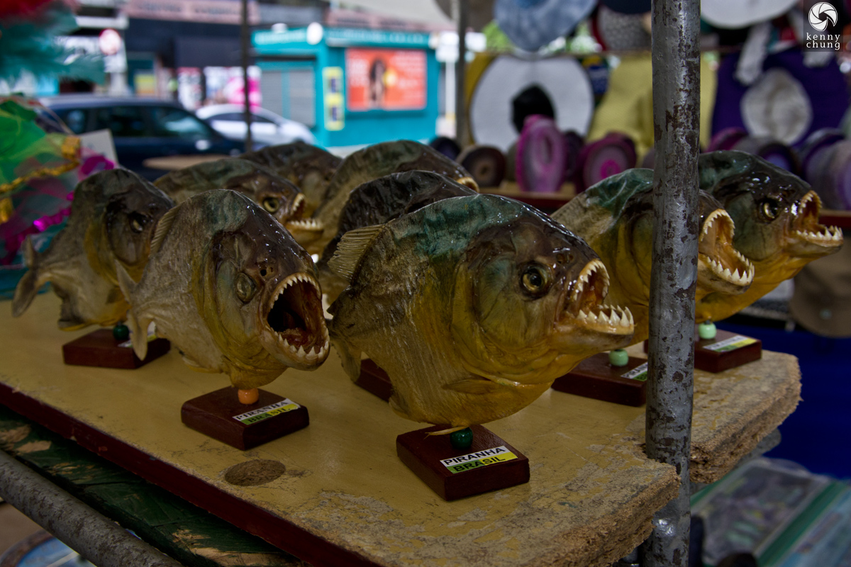 Mounted piranhas for sale at the Ipanema Hippie Fair.