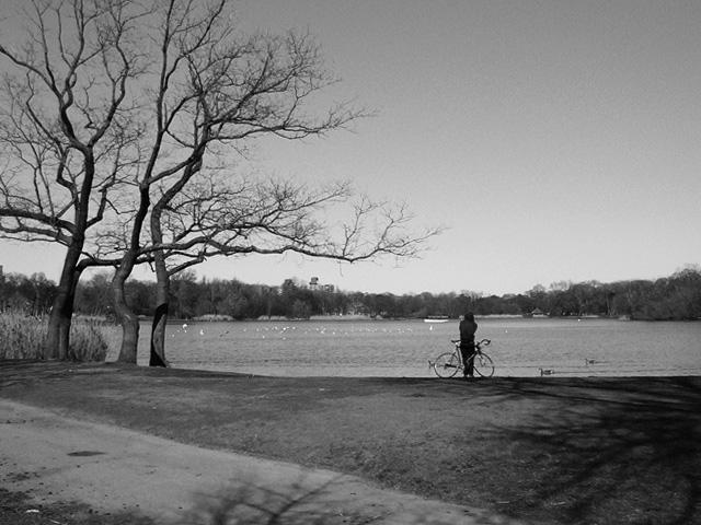 Prospect Park Photography